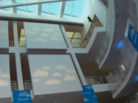 carvana-banners-at-high-museum