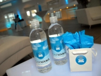 carvana-water