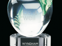 wyn-be-well-award