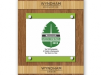 wyndam_greenwallaward